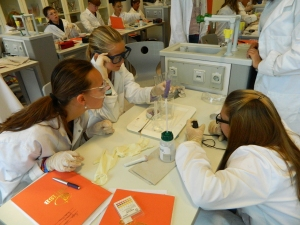 Science learning in action with the IMYC at IS Bremen, Germany